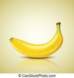 Banana design, vector illustration