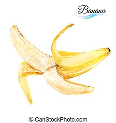 Banana drawing watercolor isolated on white background
