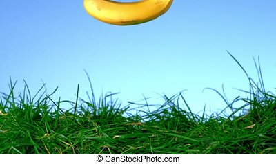 Banana falling and bouncing on grass in slow motion on blue...