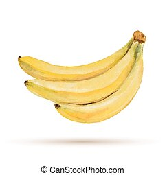 Banana hand drawn watercolor, on a white background. Vector ...