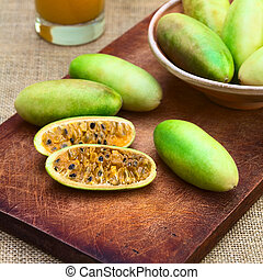 Banana Passionfruit (lat. Passiflora tripartita) - Latin...