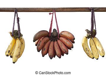 Bananas hanging on log isolated