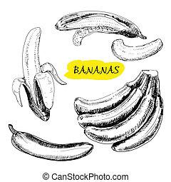 Bananas. Set of hand drawn graphic illustrations