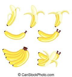 Bananas Vector - Fresh Bananas Fruits Vector Illustration