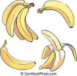 Bananas vector set in cartoon style