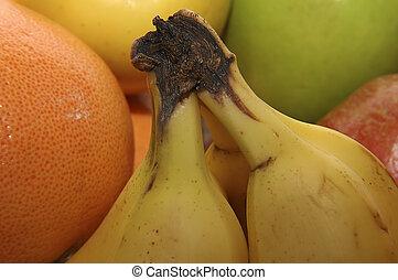 banane, tige