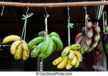 bananes, vert, cru, pendre, bambou, banane