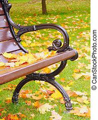 banca de parque, en, otoño, primer plano