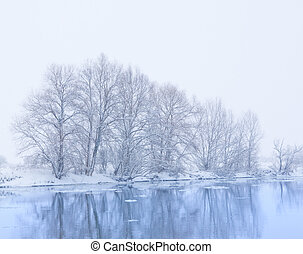 banca fiume, nevicata, albero