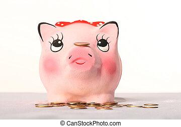 banca, maiale