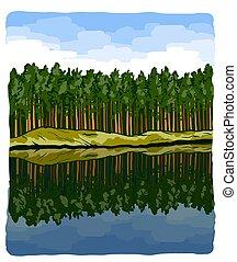 banche, alto, naturale, montagna, bello, pini, paesaggio., fiume