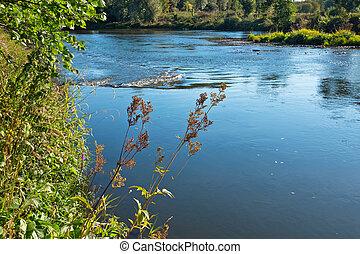 banco, de, río, en, el, día soleado