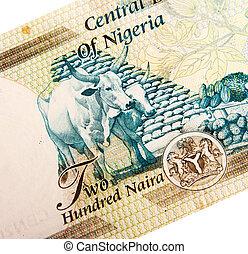 banconote, nigeriano