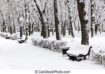 bancos, nevado, inverno, após, parque, árvores, nevada, sob, gelado