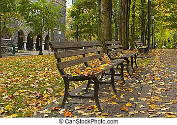 bancs, feuilles, parc, 3, automne, long