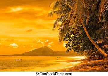 banda, indonesia, playa tropical, islas