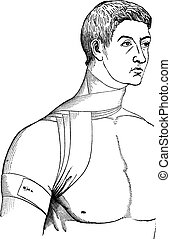 Bandage crosses the neck and armpit, vintage engraving. - ...