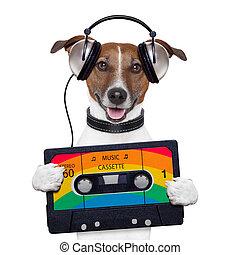 bande musique, cassette, chien, casque