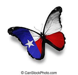 bandeira, branca, isolado, texas, borboleta