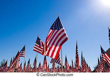 bandeira, dia, americano, honra, veterans, exposição