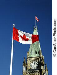bandeira, folha, maple