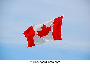 bandeira ondulando canadense, vento