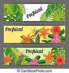 bandeiras, com, stylized, tropicais, plantas, folhas, e, flowers., imagem, para, anunciando, booklets, bandeiras, flayers, cartões