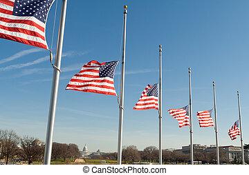 bandeiras, washington, fila, eua, meio mastro, dc, americano