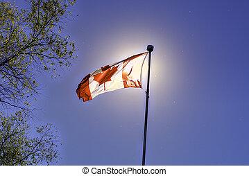 bandera canadiense que ondea, contra, cielo azul