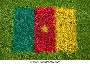 bandera, de, camerún, en, pasto o césped