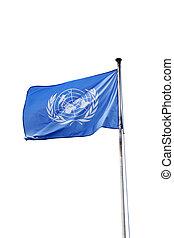 bandera, de, naciones unidas