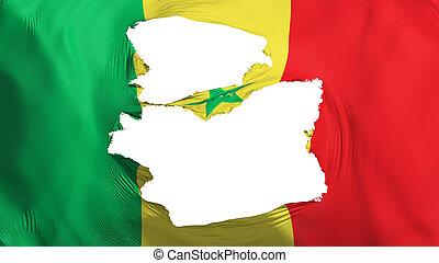 bandera de senegal, andrajoso