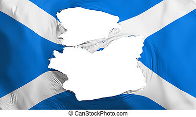 bandera, escocia, andrajoso