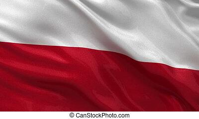 bandera, polska, pętla, seamless