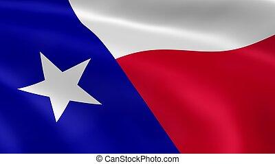 bandera, texan, viento