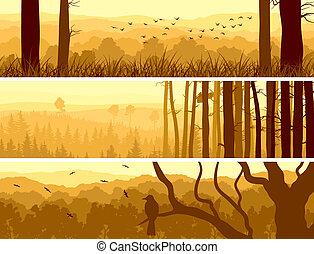 banderas, de, colinas, caduco, wood.