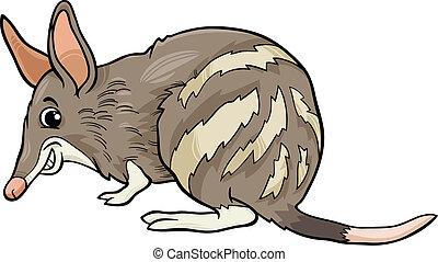 bandicoot, dyr, cartoon, illustration