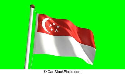 bandiera singapore, (loop, &, verde, schermo