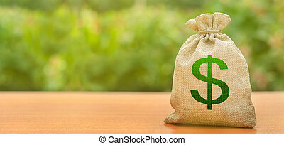 bandiera, soldi, disponibile, space., affari, investimento, dollaro, copia, sviluppo, borsa, budget, transactions., natura, finanziario, prestiti, fondo., attirando, modernization., subsidies, simbolo