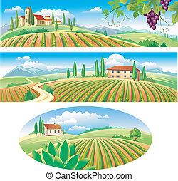 bandiere, con, il, agricoltura, paesaggio