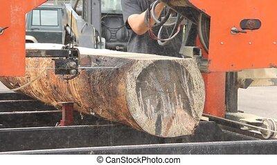 Bandsaw Sawmill cutting logs into lumber
