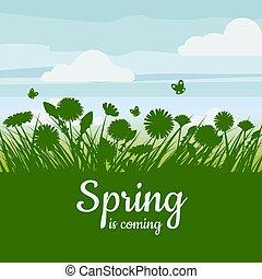 baner, 草, 隔離しなさい, sky., 春, illustrarion, dandelion., 花, camomile, バックグラウンド。, フライヤ, 緑のフィールド, ベクトル, coming.