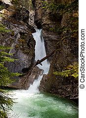 banff, scenisk, kanjon, vattenfall, np, johnston