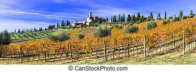 banfi, di, tradtional, italien, toscana, vineyrds., goldenes...