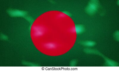 Bangladesh dense flag fabric wavers, perfect loop for background
