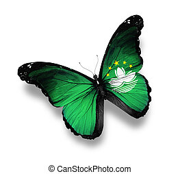 Bangladesh flag butterfly, isolated on white