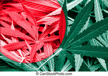 Bangladesh Flag on cannabis background. Drug policy....