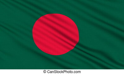Bangladesh Flag, with real structure of a fabric