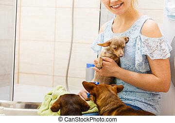 banheiro, mulher, cão, tocando