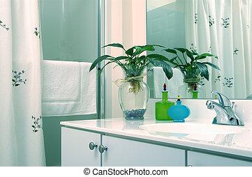 banheiro, planta